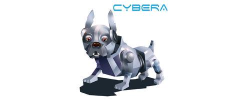 Cybera Srl